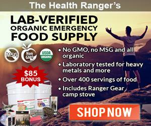 Organic-Storable-Food-Supply-MR